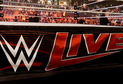 Picture of WWE Live
