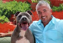 Picture of Cesar Millan