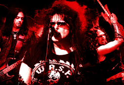 Picture of W.A.S.P.